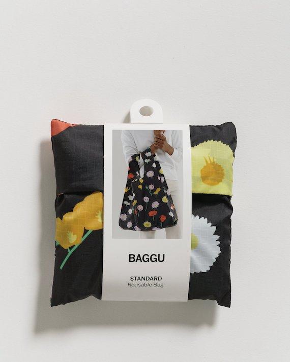 BAG_acc001S.65